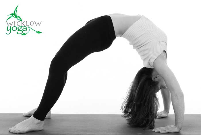 Beginners Yoga Class Wicklow
